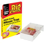 BIG CHEESE MULTRI CATCH MOUSE TRAP