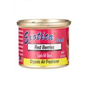 EXOTICA TIN RED BERRIES